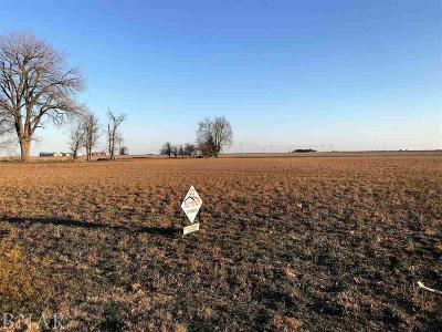 Weldon IL Residential Lots & Land For Sale: $30,000