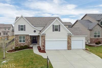 Normal Single Family Home For Sale: 2522 Fieldstone Ct