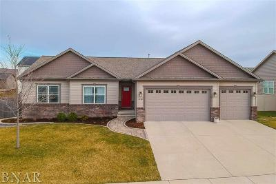Normal Single Family Home For Sale: 1712 Flagstone