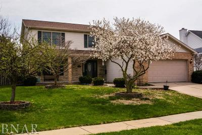Normal Single Family Home For Sale: 1207 Hanson