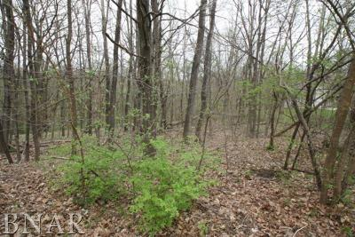 Mackinaw Residential Lots & Land For Sale: 24 Thornton