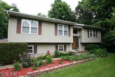 Mackinaw Single Family Home For Sale: 435 Heritage