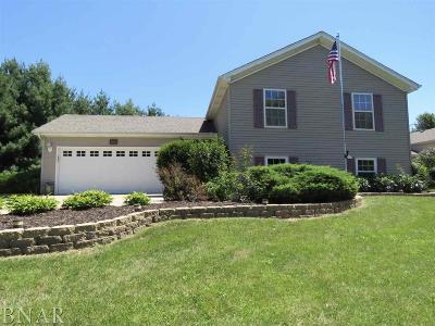 Mackinaw Single Family Home For Sale: 216 Brandy