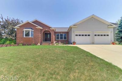 Heyworth Single Family Home For Sale: 619 Windsor Way