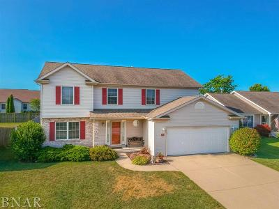 Normal Single Family Home For Sale: 311 Gambel