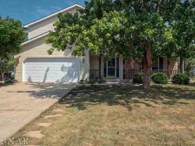 Lexington Single Family Home For Sale: 115 Hilton