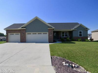 Downs Single Family Home For Sale: 503 Raef Road