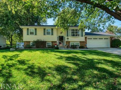 Normal Single Family Home For Sale: 101 Sandra Lane