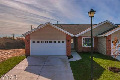 Normal Single Family Home For Sale: 225 Eugene Dr