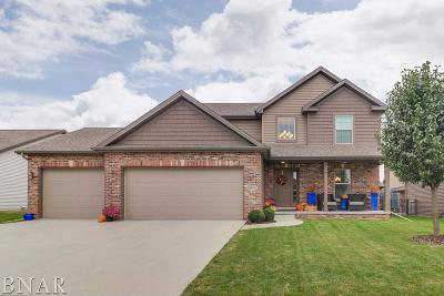 Normal Single Family Home For Sale: 2511 Fieldstone Ct