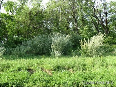 Springfield Residential Lots & Land For Sale: 1901 Cory Dr.