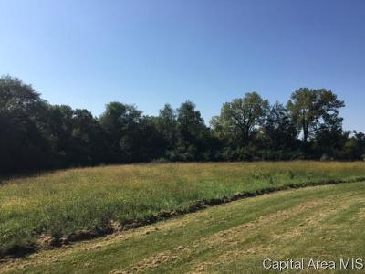 Petersburg Residential Lots & Land For Sale: 42 South Meadow Lane