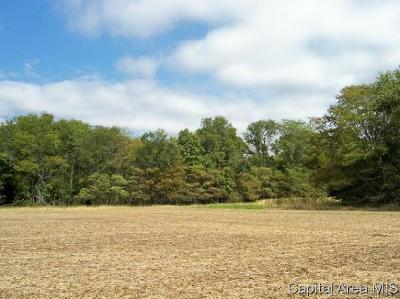 Pleasant Plains Residential Lots & Land For Sale: Lot 19 Route 97