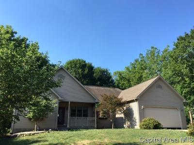 Petersburg Single Family Home For Sale: 318 W Antle St