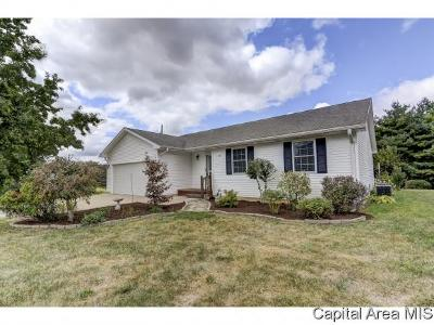 Pleasant Plains Single Family Home For Sale: 101 N Washington St