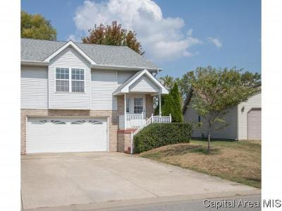 Springfield Single Family Home For Sale: 133 Genoa Dr