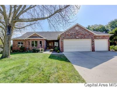 Springfield Single Family Home For Sale: 4004 Stone Bridge Road