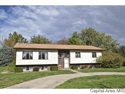 Pleasant Plains Single Family Home For Sale: 12 Hawthorn Ln