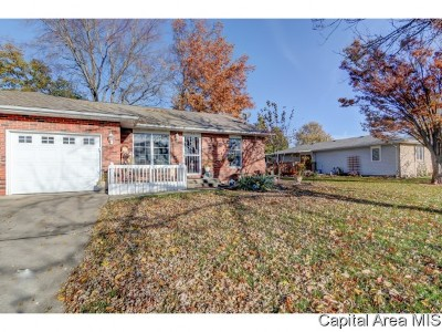 Springfield Single Family Home For Sale: 2519 Austin Dr