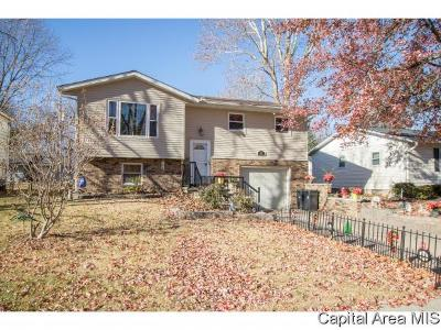 Springfield Single Family Home For Sale: 41 N Oxford Rd