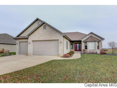 Springfield Single Family Home For Sale: 2516 Centennial Dr
