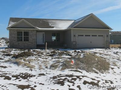 Chatham Single Family Home For Sale: 324 Dewberry Trl