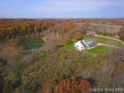 Pleasant Plains Single Family Home For Sale: 6372 Irwin Bridge Rd