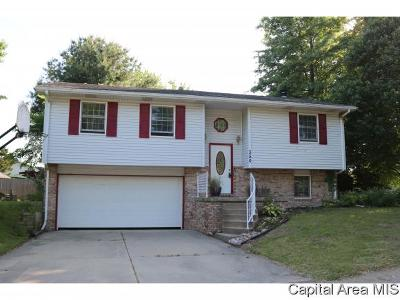 Chatham Single Family Home For Sale: 350 Teal Dr