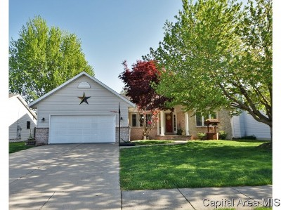 Chatham Single Family Home For Sale: 808 Chestnut Ct