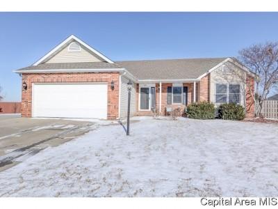 Chatham Single Family Home For Sale: 409 Eagle Ridge Dr