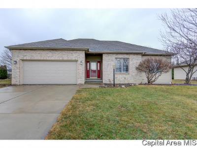 Chatham Single Family Home For Sale: 420 Eagle Ridge Dr