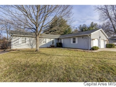 Chatham Single Family Home For Sale: 30 Meadow View Ln