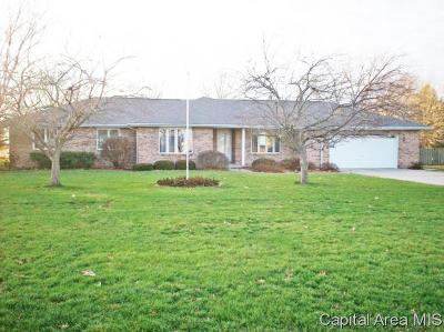 Chatham Single Family Home For Sale: 9585 S Main St