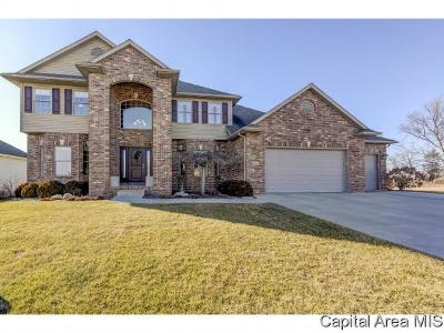 Springfield Single Family Home For Sale: 2505 Centennial Dr