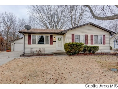 Springfield Single Family Home For Sale: 1325 Crestview Dr