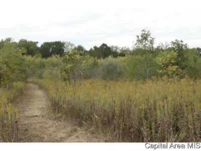 Pleasant Plains Residential Lots & Land For Sale: Irwin Bridge Rd Tract 1