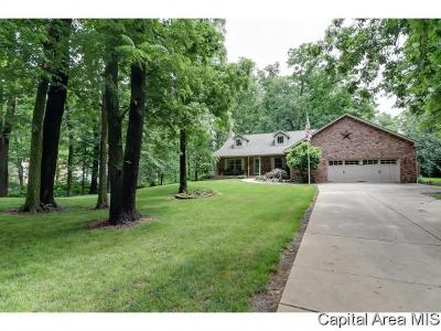 New Berlin Single Family Home For Sale: 1162 Annandale Rd