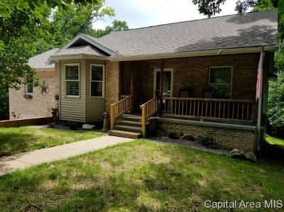 Carlinville Single Family Home For Sale: 10320 Remington Lane