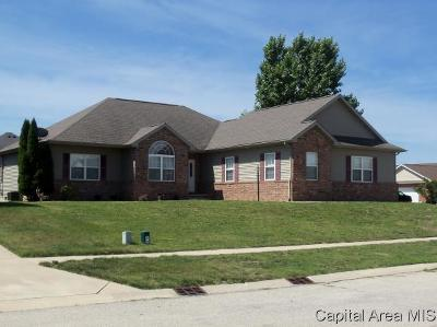 Chatham Single Family Home For Sale: 338 Snider Lane