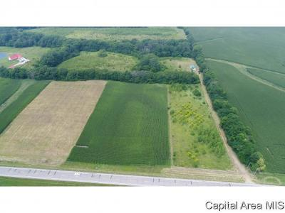 Pleasant Plains Residential Lots & Land For Sale: 4249 State Route 97