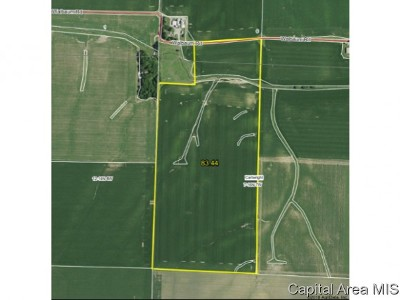 Pleasant Plains Farm & Ranch For Sale: Walbaum Road
