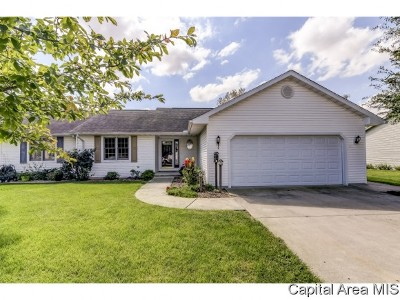 Pleasant Plains Single Family Home For Sale: 110 Willow Ln