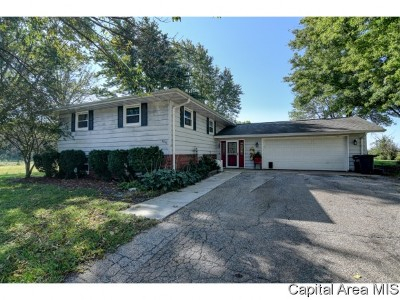 Springfield Single Family Home For Sale: 4056 Bissell Rd