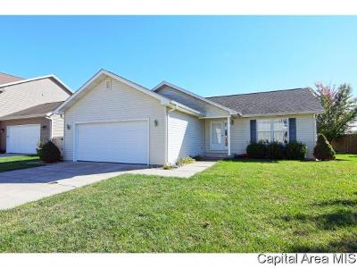 New Berlin Single Family Home For Sale: 613 Molly Lane