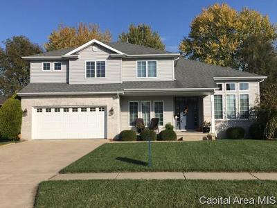 Chatham Single Family Home For Sale: 336 Winter Park Dr