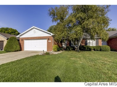 Springfield Single Family Home For Sale: 3019 Turning Mill