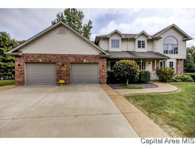 Taylorville Single Family Home For Sale: 3807 Lake Drive