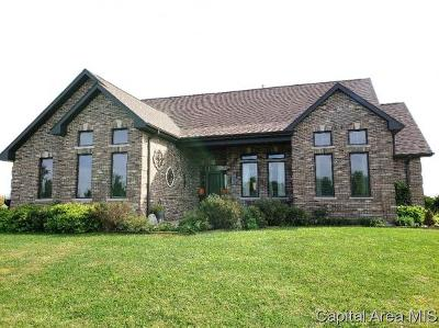 Franklin IL Single Family Home For Sale: $385,000