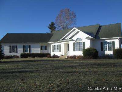 New Berlin Single Family Home For Sale: 1295 Sangamon Morgan Line Rd