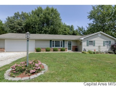 Pleasant Plains Single Family Home For Sale: 546 Circle Drive